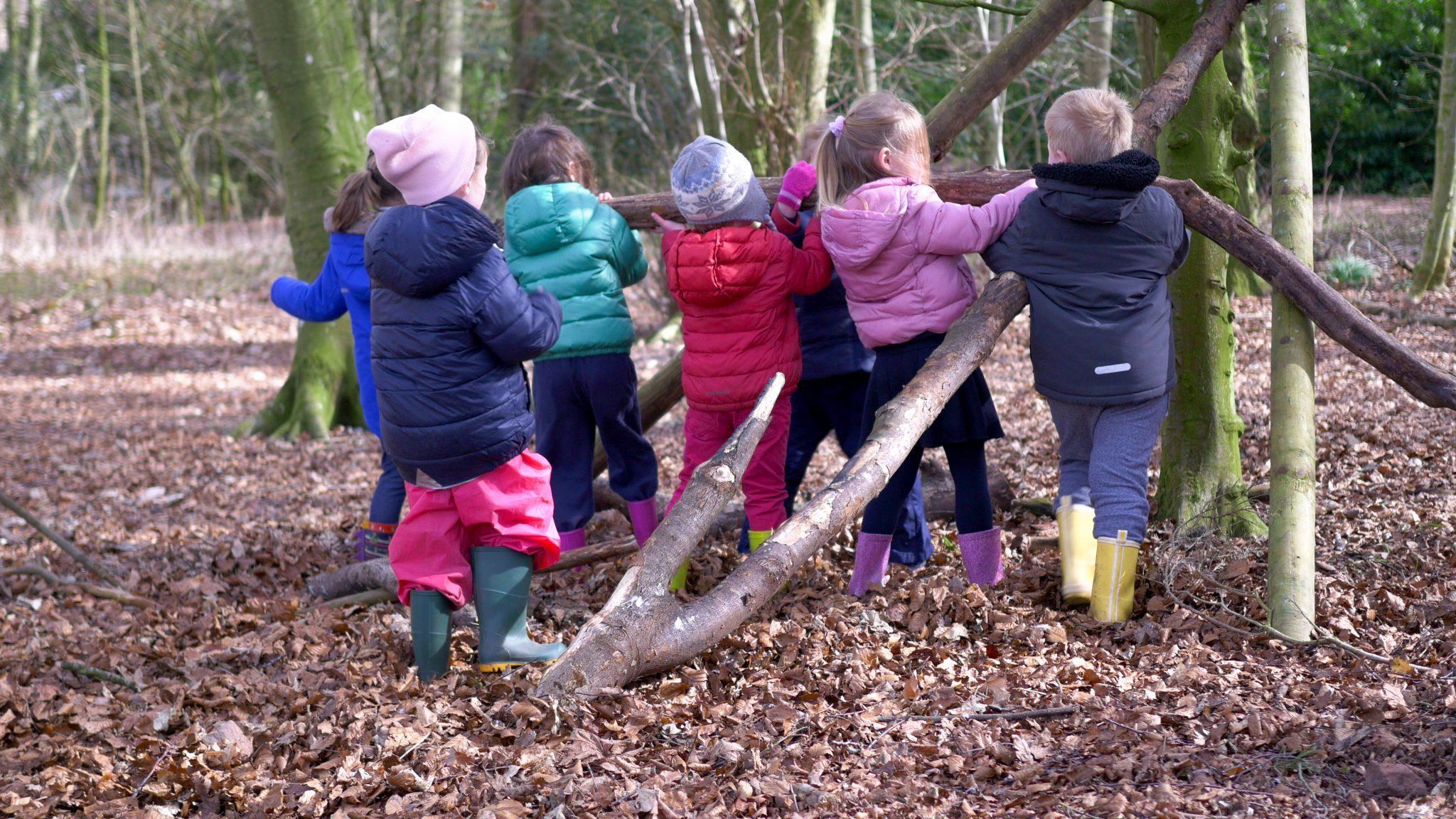 Woodland Fun